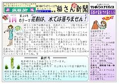 no-24  1月ネット