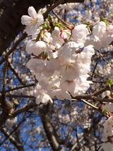 2014-03-31-15-01-48