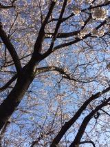 2014-03-31-15-03-29