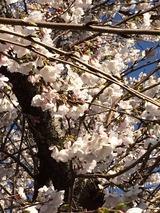 2014-03-31-15-02-00