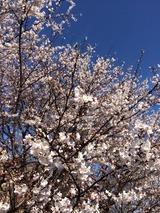 2014-03-31-15-02-58