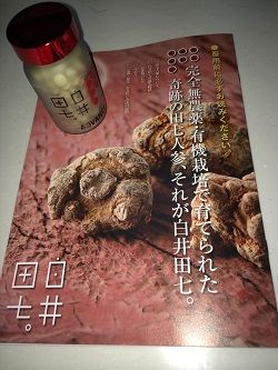 白井田七ケース