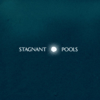 Stagnant Pools - Temporary Room