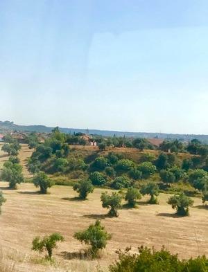 バスの窓から見た風景