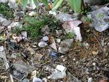 阪内川親水公園傍   不法投棄ゴミ