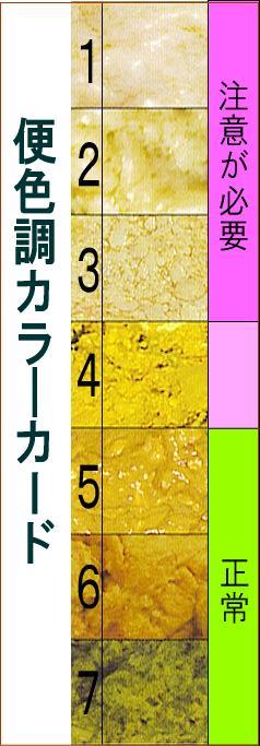 便色調カラ―カード PCモニターにより色調に違いがあるため、参考程度に留めてください。 ポッ..