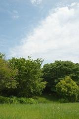 150724世田谷さくら会(2)