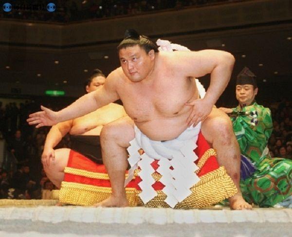 takanohana2