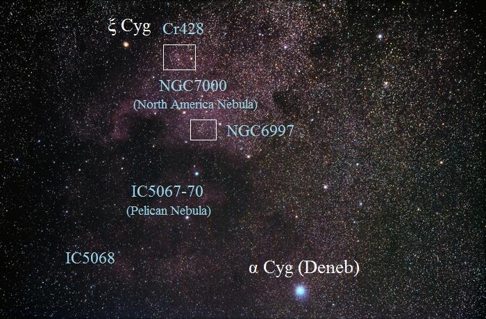 DSC_3124-3194b-700a
