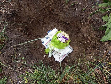 子猫のお葬式2