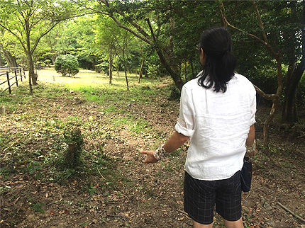 キナン・アーキパンクチャー4