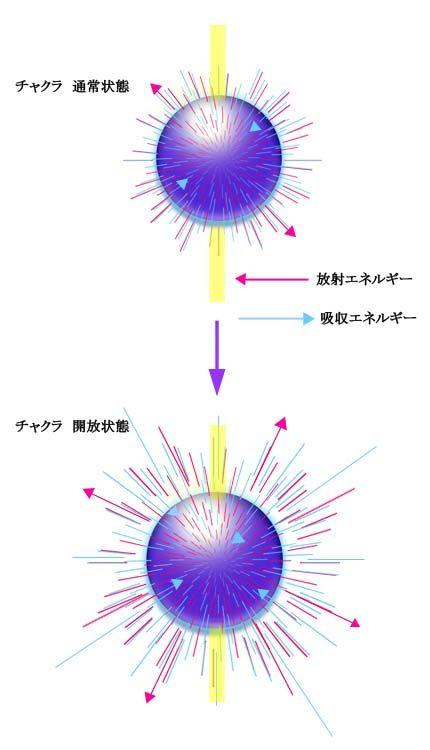 チャクラ_吸収放射パワー図