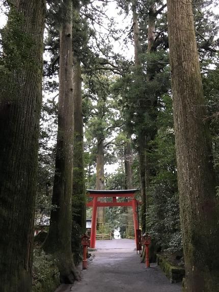 箱根神社12