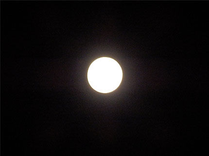 2013十五夜お月見�