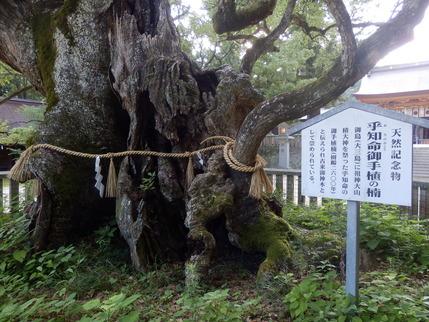 大山祇神社27