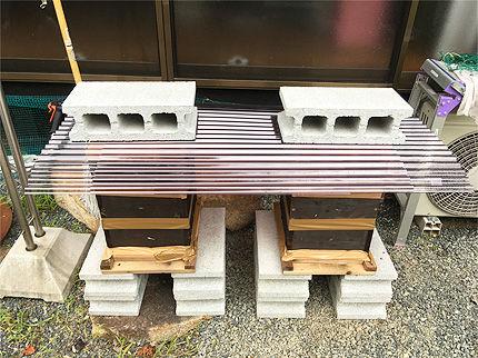 日本ミツバチ受け取り2