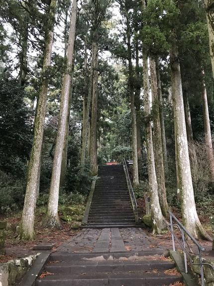 箱根神社14