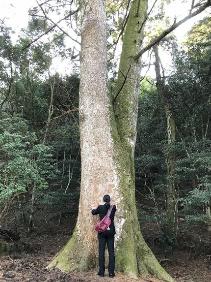 令和2年初詣_巨木パワーチャージ2