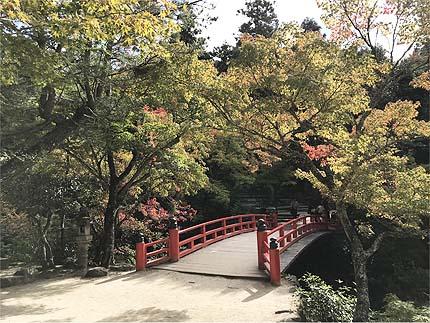 2018_1101紅葉谷公園2