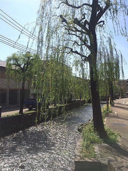 2016京都ミネラルショー8