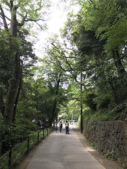 高尾山 天狗23