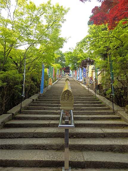厳島参拝5月17大聖院