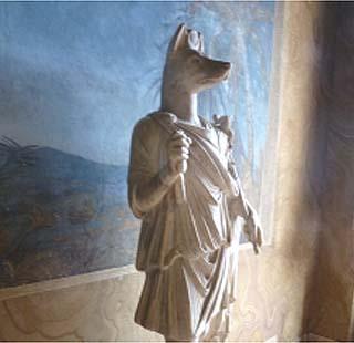 アヌビス神�