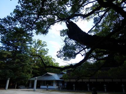 大山祇神社30