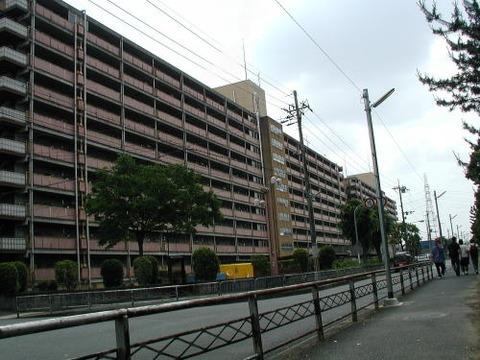 uji024