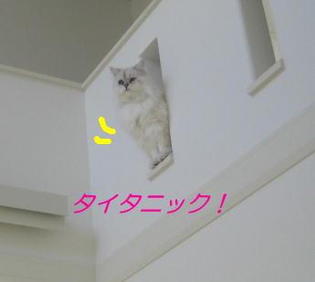 baa725c4.jpg