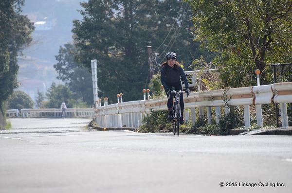 15 LinkageCycling 010