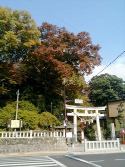 織姫神社_鳥居