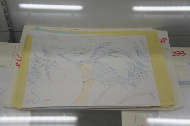 ぼんぼりDSC01215