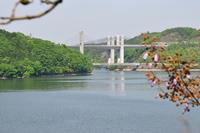 1118三木市(神戸市北区衝原ダム)までの風景