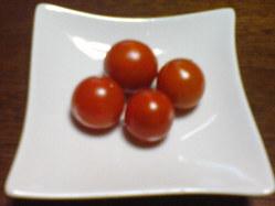 422三田市畳加熱乾燥、プチトマト