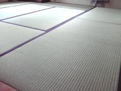 695神戸市西区表替え、畳干しのつもりが畳加熱乾燥機