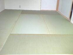 509奈良県縁無し畳・新畳