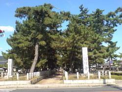 521奈良県生駒郡斑鳩町・法隆寺