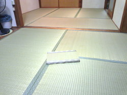 733神戸市中央区表替え