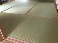 2199特別栽培畳表