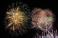2031八木の花火