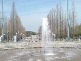 330大阪市鶴見区・花博記念公園鶴見緑地