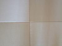 2053琉球畳風縁無し畳