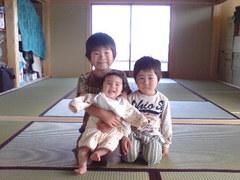 365静岡県新畳納入