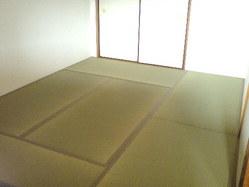 515神戸市東灘区御影山手・赤ちゃん安心畳表プレミアム