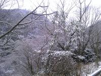 1355神戸市灘区六甲山