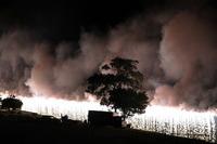 1651八木の花火大会