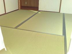 541神戸市垂水区新畳、無農薬畳表(無染土)・畳床