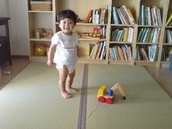492神戸市中央区新畳、赤ちゃん安心畳床Wソフト