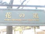 335宝塚市宝塚歌劇花の道